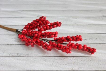 Веточка бузины с красными ягодками SCB, купить - БлагоЛис
